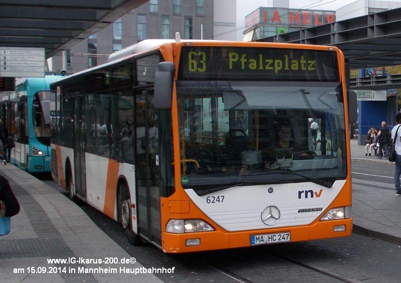 MA-HC 247